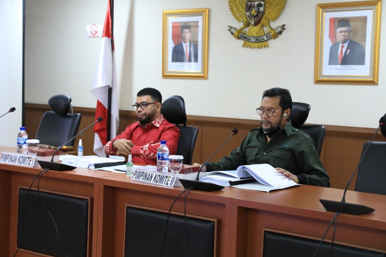 DPD RI dan Pemerintah Akan Susun RPP Otsus Papua